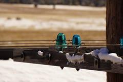 Alte blaue Isolatoren Lizenzfreie Stockfotos
