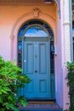 Alte blaue Tür und Anlagen Stockfotografie