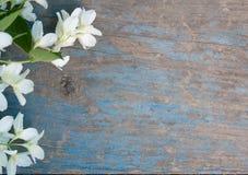 Alte blaue Tabelle mit Jasminblumen Lizenzfreies Stockfoto