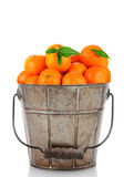 Alte Blecheimer-Klementinen lizenzfreies stockfoto