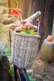 Alte Blume des Korbes Lizenzfreie Stockbilder