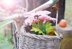 Alte Blume des Korbes Lizenzfreies Stockbild