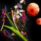 Alte Blumen und Orangen Lizenzfreie Stockfotografie
