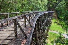 Alte Bockbrücke Noojee im Eukalyptuswald Stockbild