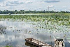 Alte Boote im Sumpf Stockbilder