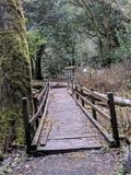 Alte Brücke lizenzfreie stockfotos