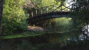 Alte Brücke auf Fluss stock video