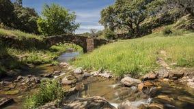 Alte Brücke in den Ruinen Stockfotos