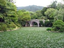 Alte Brücke im koreanischen Garten Lizenzfreie Stockbilder