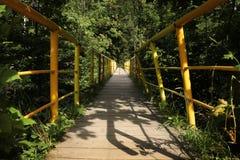 Alte Brücke im Wald Stockbild
