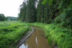 Alte Brücke, Seeverschlüsse und grünes Gras Stockfoto