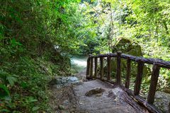 Alte Brücke tropisch Stockbild