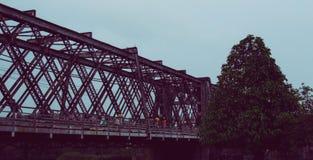 Alte Brücke und Baum Stockbild