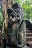 Alte Brücke und Dschungel am heiligen Affen Forest Sanctuary, Ubu Stockfoto