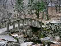 Alte Brücke unter einem Nebenfluss im Wald Stockfotos