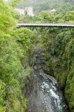 Alte Brücke von Salazie auf La Reunion Island, Frankreich Lizenzfreie Stockfotos