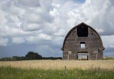 Alte braune hölzerne Scheune, die auf einem Gebiet des goldenen Weizens sitzt Stockbild
