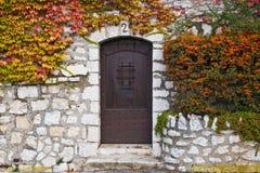 Alte Brown-Tür Stockbild