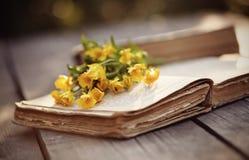 Alte Butterblumeen des offenen Buches und des Gelbs Stockbilder
