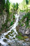Alte cascate nel mezzo della natura intatta Fotografia Stock