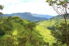 Alte colline nello Sri Lanka Fotografie Stock Libere da Diritti