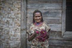 Alte Dani-Stammdame im ländlichen Gebiet von West-Papua lizenzfreie stockfotos