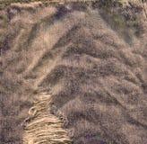 Alte Denimjapan-Baumwollstoffbeschaffenheit Denimjeans zerstörten Hintergrund Lizenzfreie Stockbilder