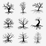 Alte dunkle Bäume mit Wurzeln Toter Wald des Vektors stock abbildung