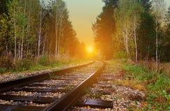 alte Eisenbahn überschreitet durch einen malerischen Herbstwald mit gelbem Laub bei dem Sonnenuntergang, der durch die Strahlen d lizenzfreie stockfotos