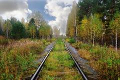 alte Eisenbahn überschreitet durch einen malerischen Herbstwald mit gelbem Laub bei dem Sonnenuntergang, der durch die Strahlen d lizenzfreies stockbild
