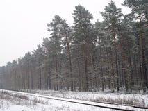 Alte Eisenbahn Lizenzfreies Stockfoto