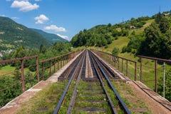 Alte Eisenbrücke mit Schienen vor dem hintergrund der grünen Bäume und der enormen Berge Stockfotografie