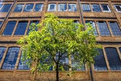 Alte Fabrik Lizenzfreie Stockbilder