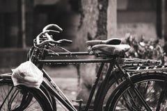 Alte Fahrräder im Regen mit einer Plastiktasche stockfotos