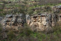 Alte Felsen in der Gesichtsform Stockfotos