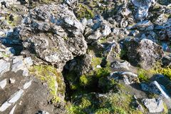alte Felsen am Laugahraun-Lavafeld in Island Lizenzfreie Stockbilder