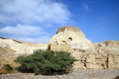 Alte Festung Neve Zohar Stockbilder