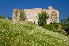 Alte Festung Slunj in der grünen Natur Stockbild