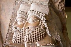 Alte Flachreliefs von Persepolis, der Iran Stockfotos