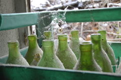 Alte Flaschen Lizenzfreies Stockfoto