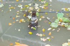 Alte Flaschen, die in das Wasser schwimmen Stockfotos