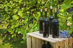 Alte Flaschen selbst gemachter Wein fotografierten vor dem hintergrund der Rebe Lizenzfreie Stockfotos