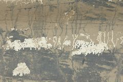 Alte flockige Farbe, die weg einer Grungy gebrochenen Wand abzieht Sprungs-altes PA lizenzfreies stockbild