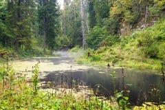 Alte Flussbank mit Reflexionen im Wasser Lizenzfreies Stockfoto