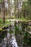 Alte Flussbank mit Reflexionen im Wasser Lizenzfreie Stockfotos