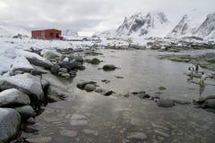 Alte Forschungsstation und eine Kolonie von Pinguinen um das mountai Stockfotografie
