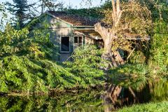 Alte Forstbaumschulescheune in Boskop, Holland lizenzfreies stockbild