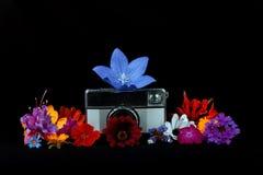 Alte Fotokamera mit Blumen Stockfotos