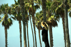 Alte Frau, die über Palmen aufpasst Stockfotografie