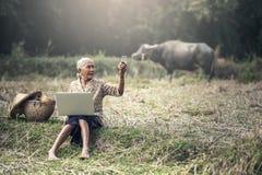 Alte Frau, die einen Laptop verwendet Stockbild